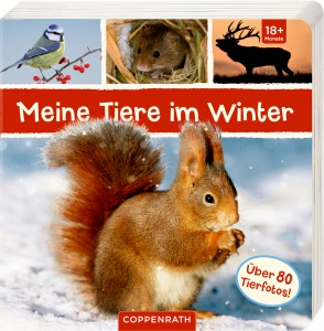 winter geschichtenwolke kinderbuchblog. Black Bedroom Furniture Sets. Home Design Ideas